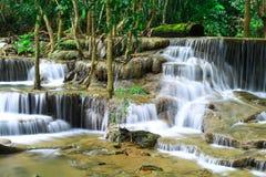 在雨林中间的瀑布 库存图片