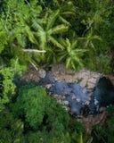在雨林和小小河的美好的空中场面 免版税库存照片