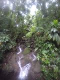 在雨林多米尼加的瀑布 库存图片