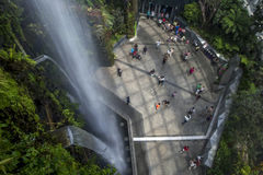 在雨林心房的瀑布在滨海湾公园在新加坡 免版税库存图片