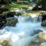 在雨林的小瀑布。 免版税库存图片