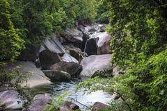 在雨林的巨石城小河 免版税图库摄影