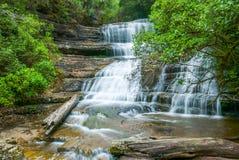 在雨林的瀑布,塔斯马尼亚岛 免版税库存图片