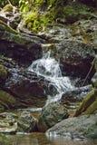 在雨林的瀑布 免版税图库摄影