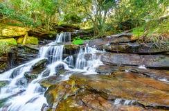 在雨林的落下的瀑布 免版税库存照片