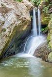 在雨林的Wallterfall 免版税图库摄影