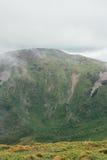 在雨,与灰色天空的绿色风景前的山 库存图片