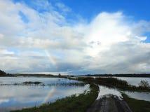 在雨,立陶宛以后的秋天洪水 免版税库存图片
