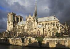 在雨,巴黎,法国前的巴黎圣母院 免版税库存图片