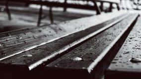在雨以后的一条长凳 免版税库存照片