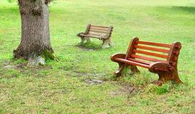 在雨以后的二条长凳 免版税库存照片