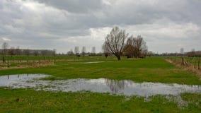 在雨以后的佛兰芒农田风景 免版税库存照片