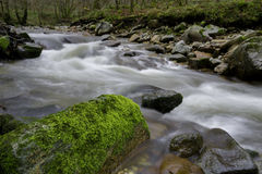 在雨以后的河 库存图片