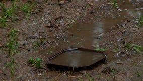 在雨以后的泥-在泥的塑料 股票录像