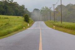 在雨以后的湿路 库存图片