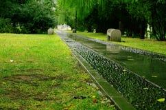 在雨以后的秋天公园 库存图片