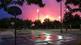 在雨以后的高沙漠校园 免版税库存图片