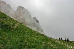 在雨以后的Passo Falzarego与高山花和远足者 库存照片