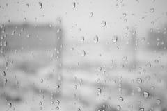 在雨以后 免版税库存图片