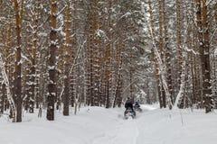 在雪上电车的步行 免版税库存照片