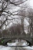 在雪下的东南水库桥梁 库存图片