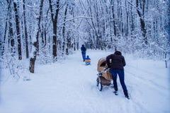 在雪下的冬天森林 1月早晨步行通过森林家庭步行在冬天公园 免版税库存图片