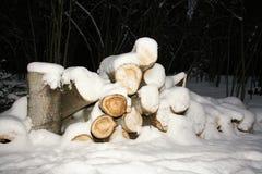 在雪下的日志 库存照片