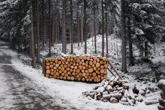 在雪下的木日志 库存图片