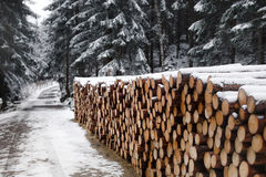 在雪下的木日志 免版税图库摄影