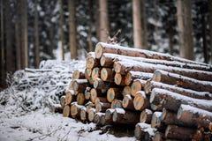 在雪下的木日志 图库摄影