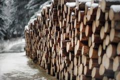 在雪下的木日志 免版税库存图片