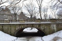 在雪下的沼地曲拱 免版税库存图片
