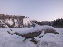 在雪下的海豚在冬天湖 免版税库存图片