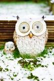 在雪下的猫头鹰 免版税库存照片