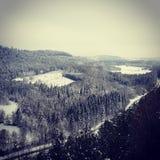 在雪下的自然风景 免版税库存照片