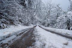 在雪下的路围拢与树在雪下 免版税库存照片