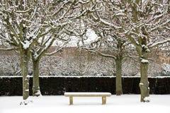 在雪下的长凳围拢与树 免版税库存照片