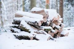 在雪下的击倒的木头 免版税库存照片