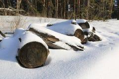 在雪下的Woden日志 库存照片
