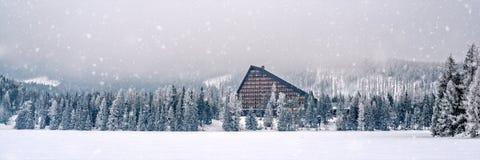在雪之下的亭子 免版税库存照片