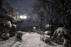 在雪之下的空的公园在冬天寒冷晚上期间 库存照片