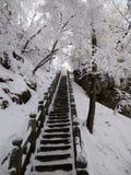 在雪以后的古老楼梯 免版税图库摄影