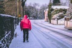 在雪包括的村庄在风暴埃玛,亦称从东方的野兽和遛一个的人期间他的狗 免版税库存照片