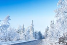 在雪和冰的俄国冬天森林公路 库存照片
