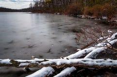 在雪和冰盖的翻车鱼池塘,在特拉华峡谷Nati 免版税库存图片