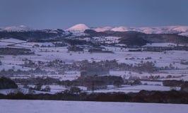 在雪和早晨薄雾的小山在风景领域在冬天 免版税图库摄影