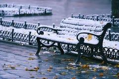在雪和黄色叶子的长凳 免版税库存图片