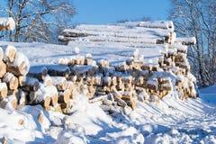 在雪埋没的木头日志 图库摄影