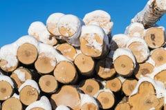 在雪埋没的木头日志 库存图片