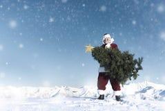在雪山概念的圣诞老人运载的圣诞树 免版税库存照片